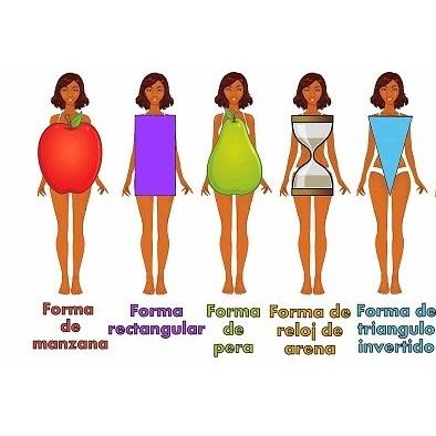 Conoces la forma de tu cuerpo?